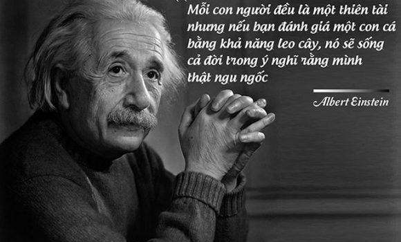Mỗi đứa trẻ là một thiên tài
